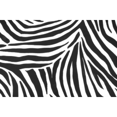 Tiger/ white-black