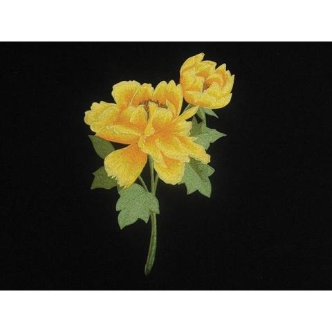 Poppy Flower Motif